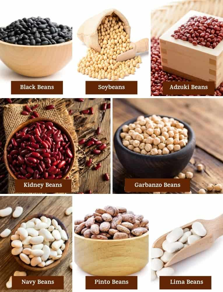 Different varieties of beans