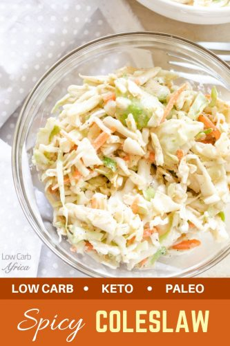 low carb coleslaw spicy pinterest