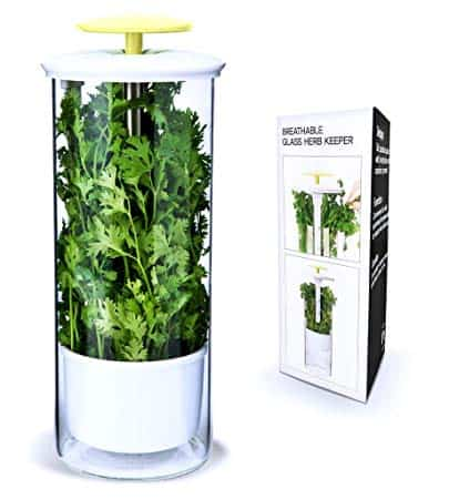 Herb Keeper and Storage Container