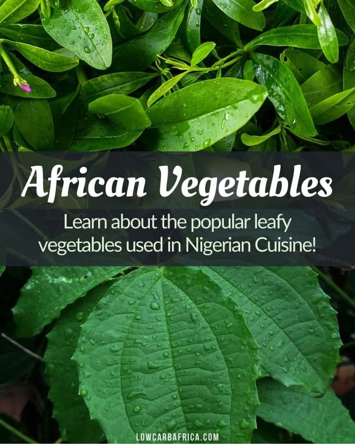 vegetables used in Nigerian cuisine