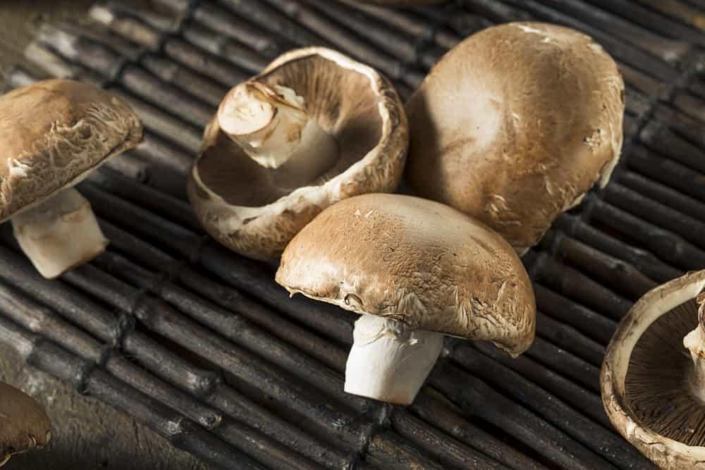 Raw Organic Portobello Mushrooms
