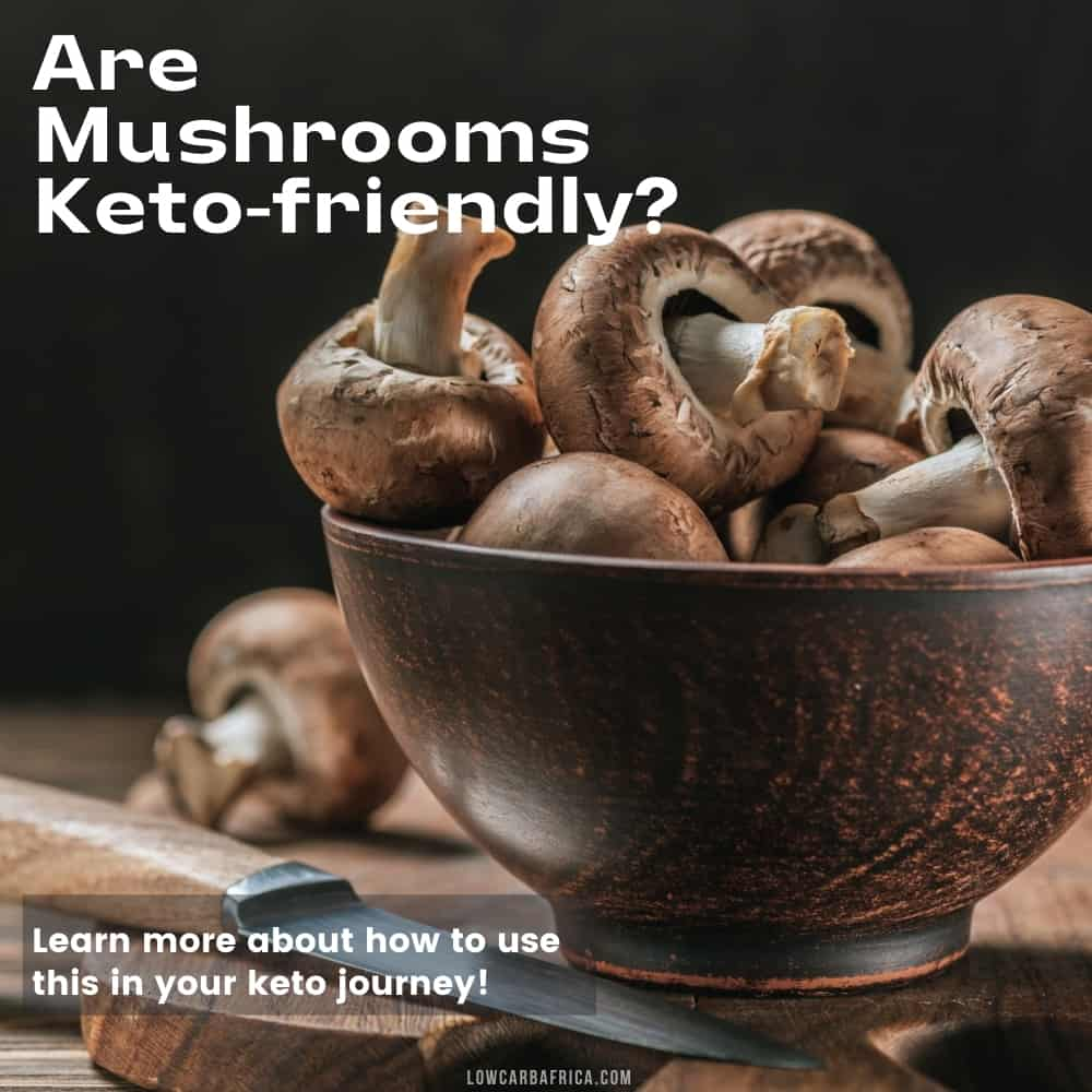 image of mushrooms on dark background