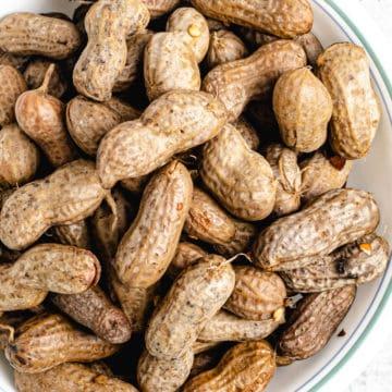 closeup shot of instant pot boiled peanuts
